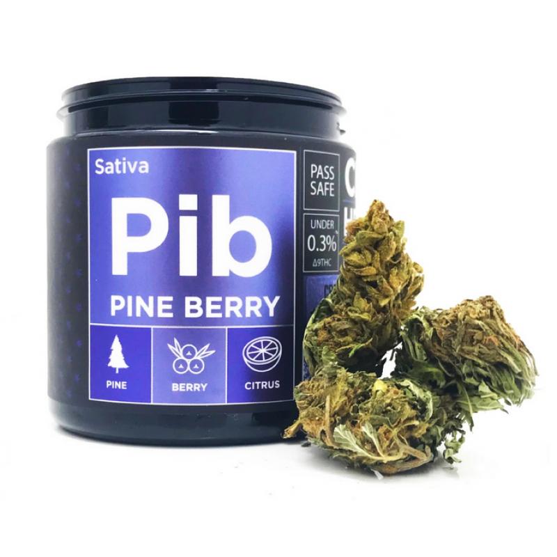 CBD Hemp Flower - Pine Berry (15.91% CBD)